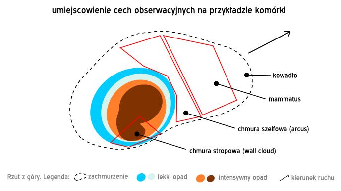 cechy obserwacyjne burz