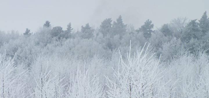 pogoda na Boże Narodzenie